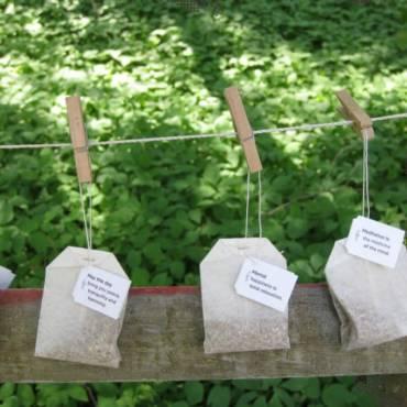 Tea… It Does the Garden Good
